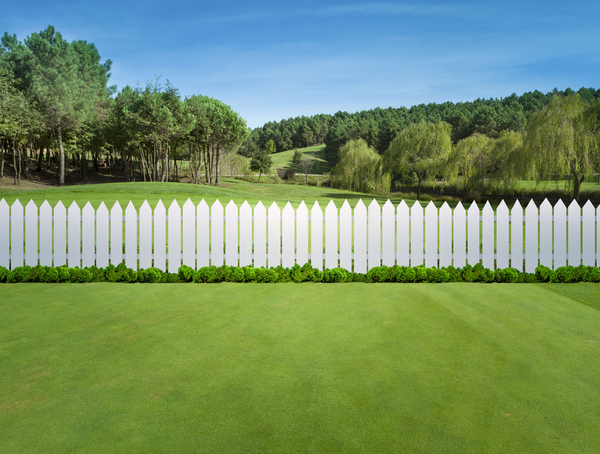 Fence Installation: Which Type Is Best for Your Needs?